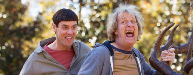 In Lemony Snicket, Der Grinch oder Dumm und Dümmehr! Jim Carrey hat das Gesicht dafür!