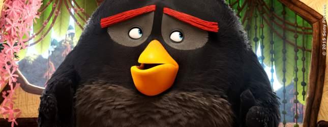 Angry Birds - Bild 7 von 7