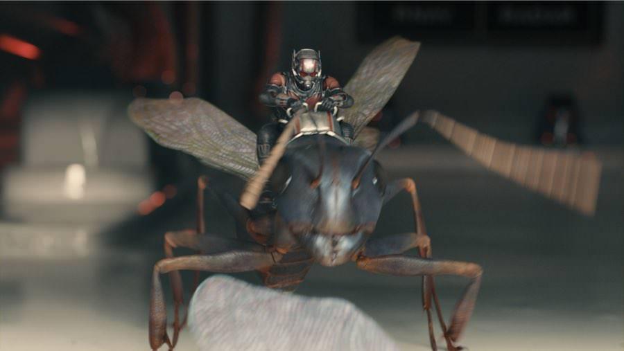 Ant-Man braucht kein Pferd. Ant-Man hat Ameise!