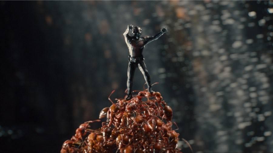 Ant-Man und seine Armee aus Ameisen bilden ein gutes Team.