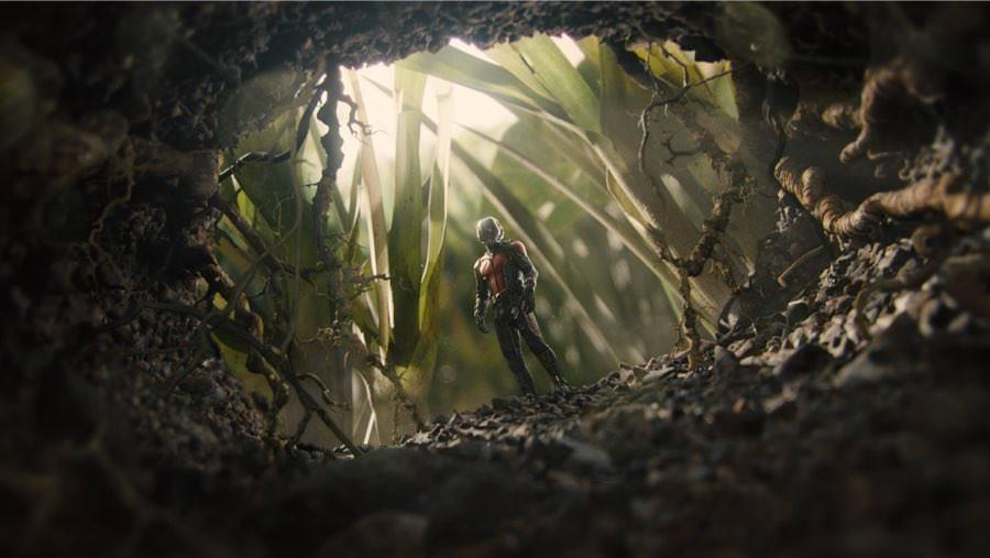 Ant-Man sondiert die Lage am Ameisenloch. Soll er sich hinein wagen?