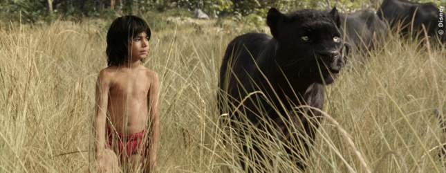 The Jungle Book - Bild 2 von 5