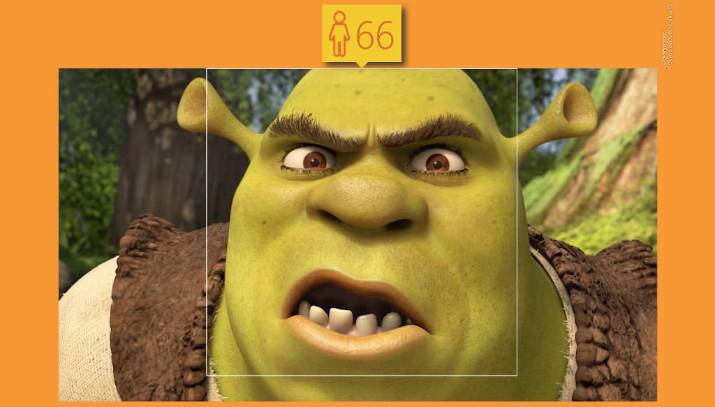 Shreks echtes Alter kennt nur Shrek!