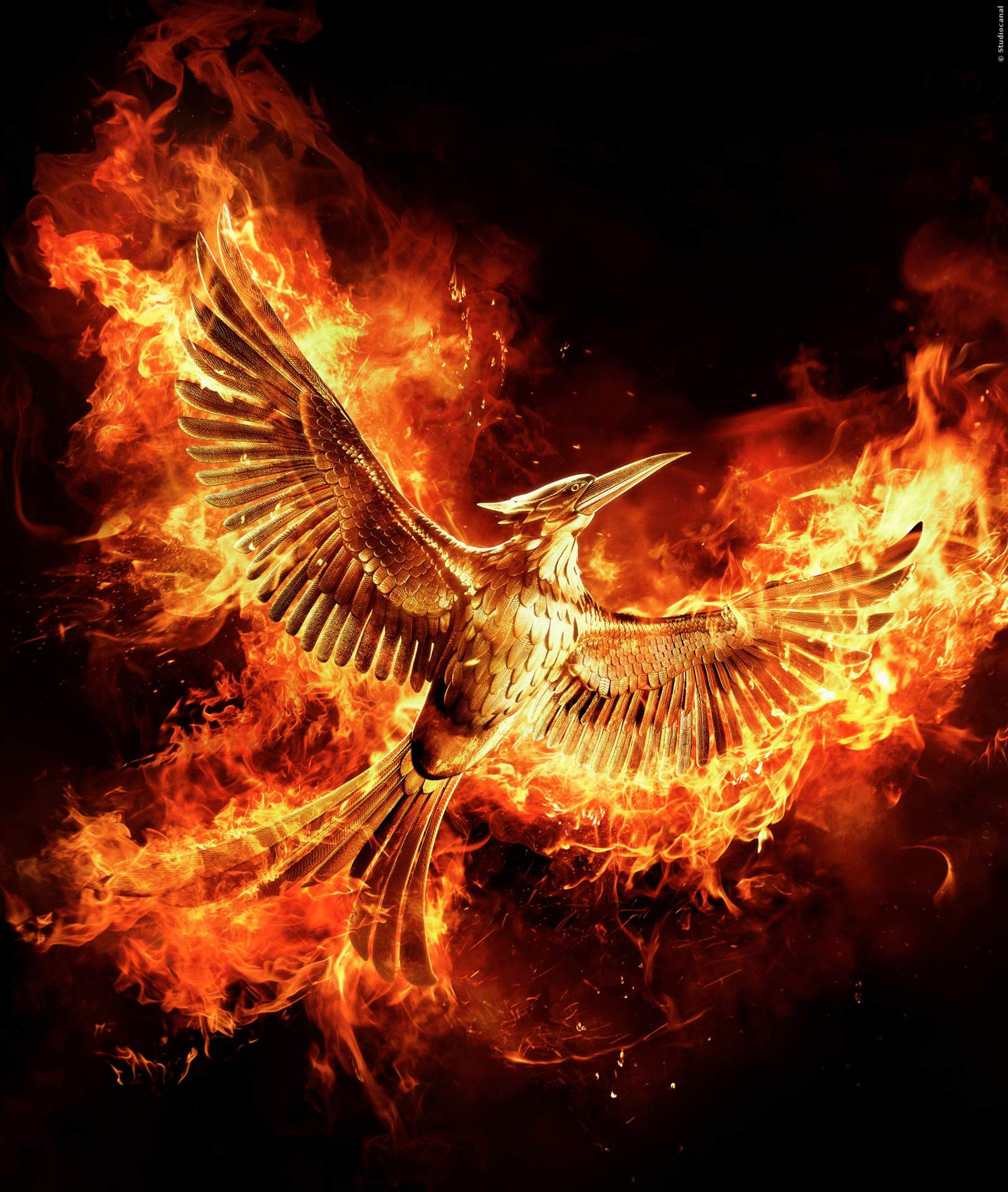 Die tribute von panem 4 trailer mockingjay teil 2 trailerseite film tv for Die tribute von panem 2