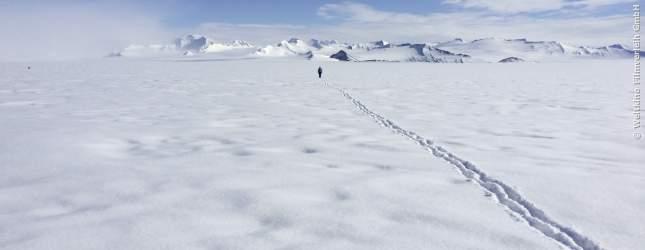 Im ewigen Eis kann es oft einsam werden.