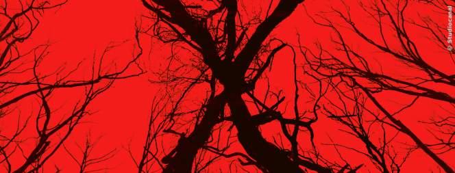 Das Plakat-Motiv zur Horror-Fortsetzung Blair Witch 2016