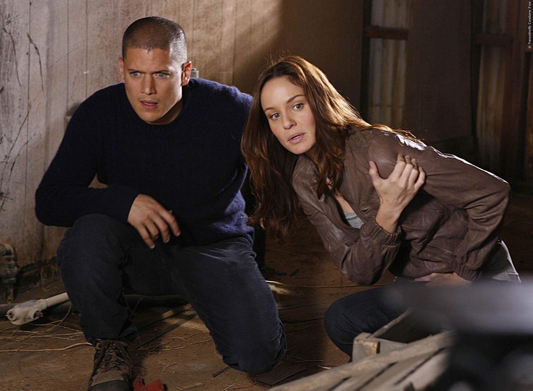 Sara Tancredi und Michael Scofield waren das Dreamteam in der Serie PRISON BREAK.