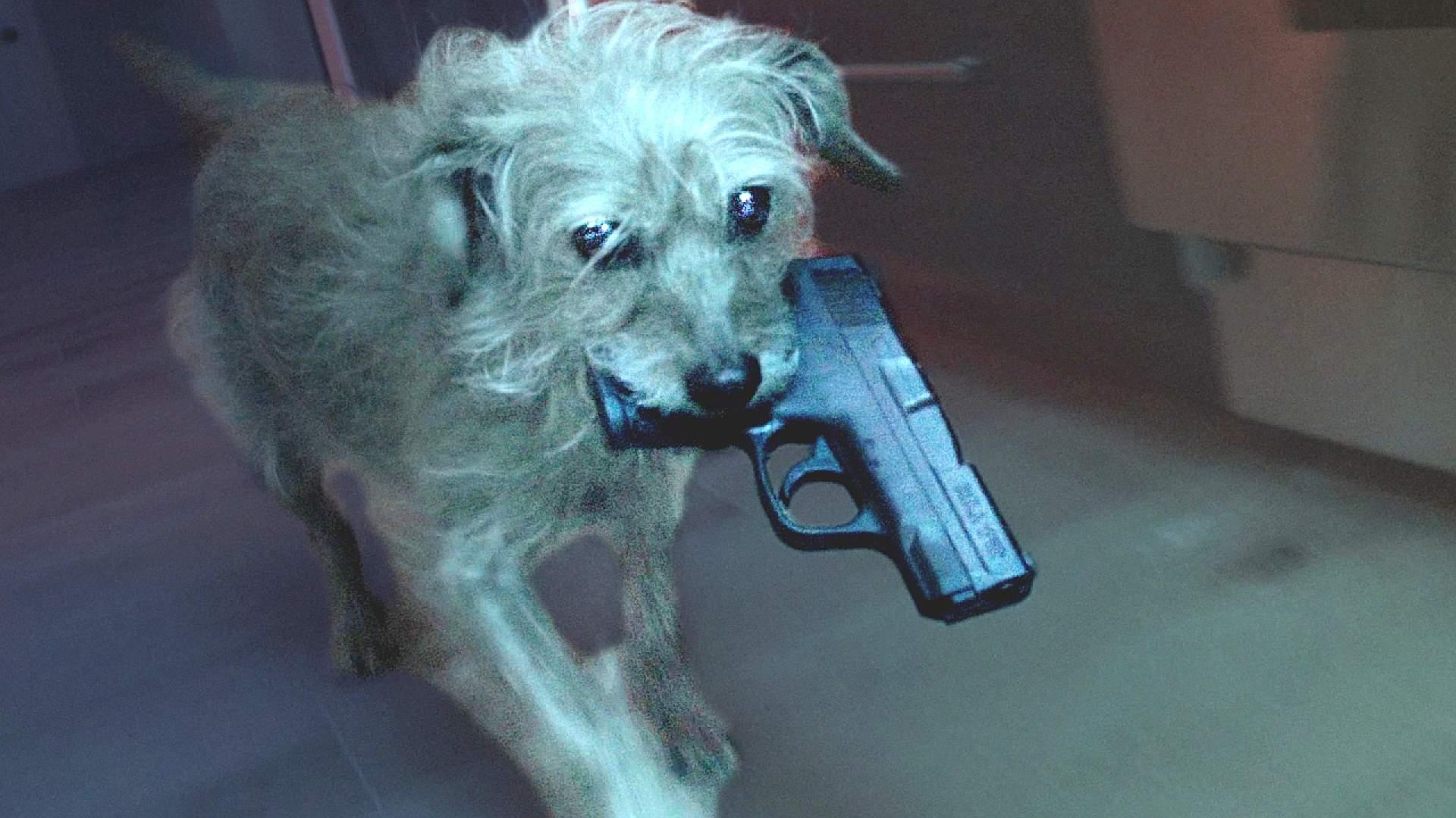 DOG WICK: Der Hund von 'John Wick' ist auch ein verdammter Killer! Selten so gelacht!