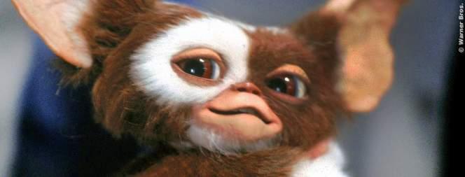 Gremlins 3: Neue Hoffnung auf Fortsetzung