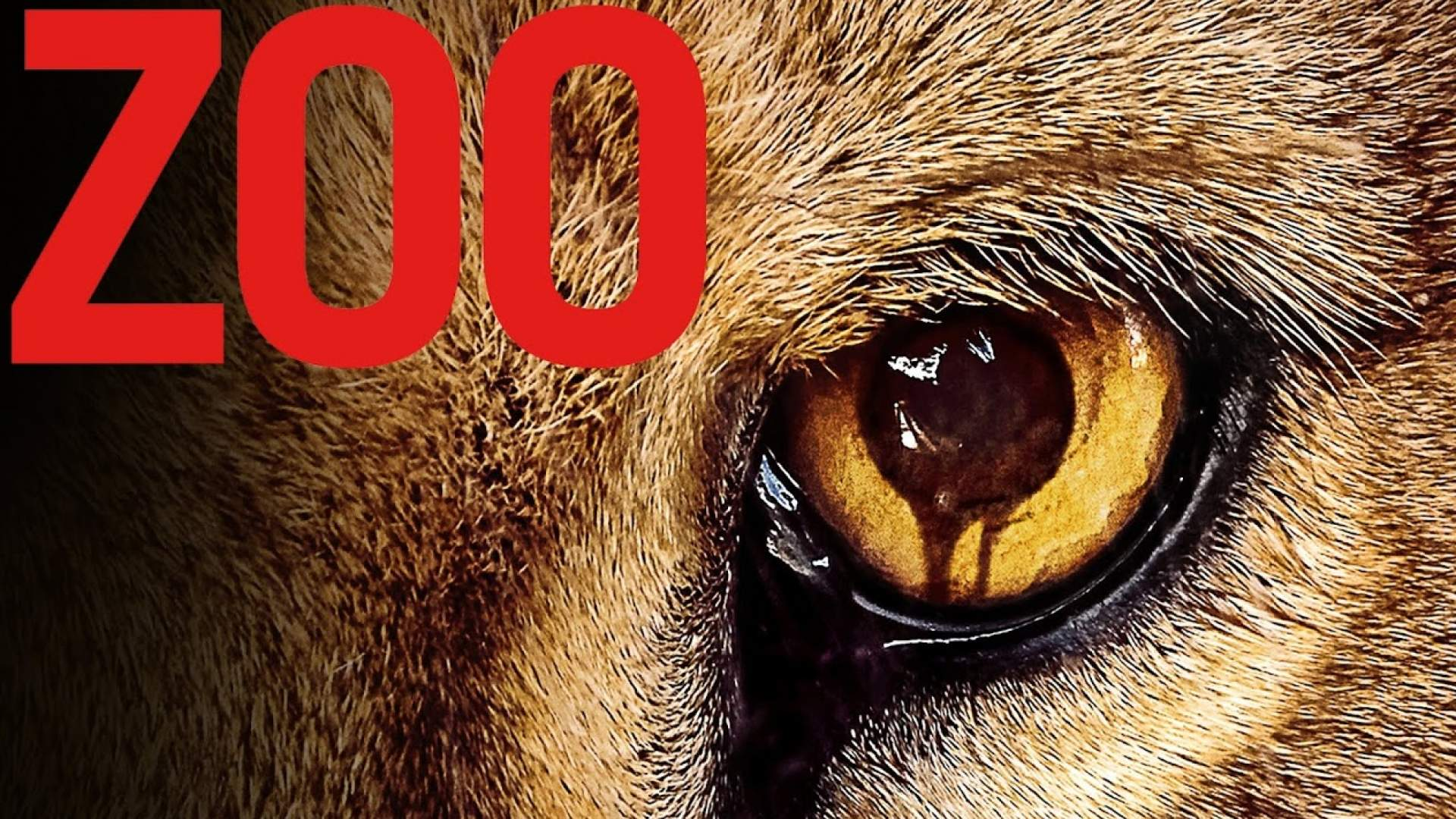 Zoo Serie Staffel 2