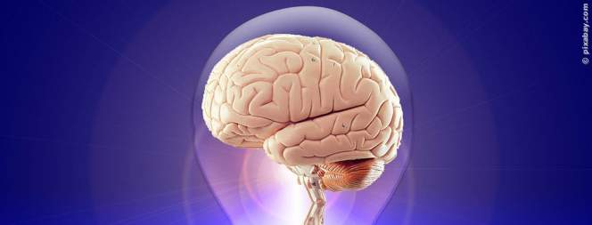 Gehirnerschütterung: So handelt ihr richtig