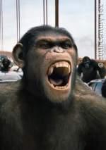 Planet Der Affen 1 - Prevolution