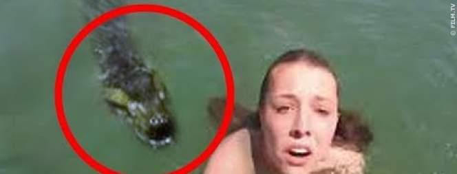 Lebensgefährliche Begegnungen im Wasser