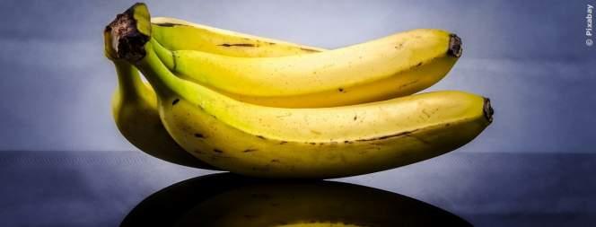 Darum solltest du jeden Tag Bananen essen