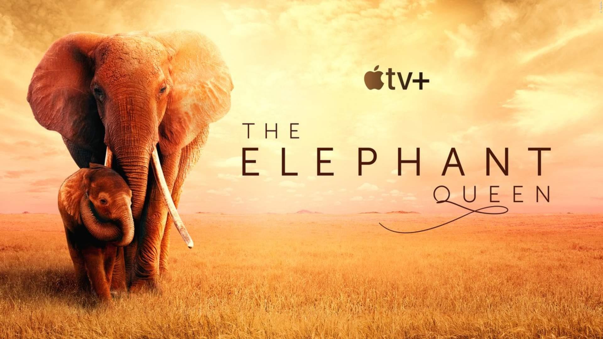 APPLE TV+: Spannende Tier-Doku aus dem Herzen Afrikas