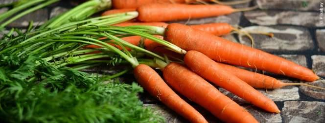 Darum solltest du täglich Karotten essen