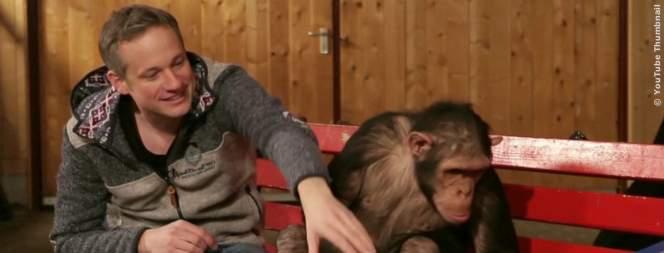 Magier verarscht Affen mit Zaubertricks