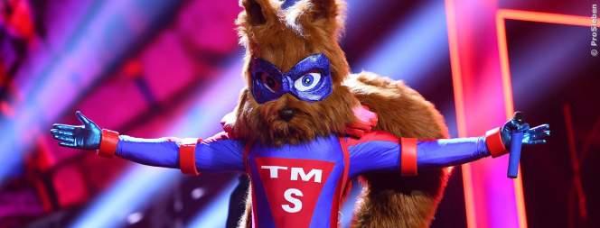 TMS: Das Eichhörnchen ist ein echter Welt-Star