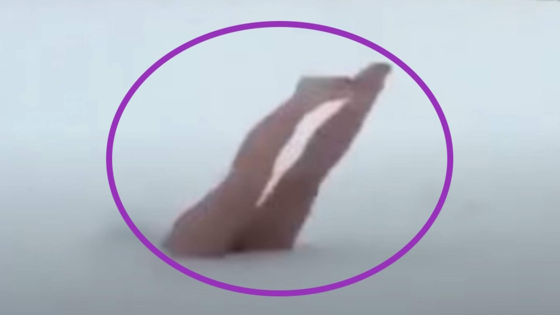 VIDEO: Beim Versuch sexy zu sein versagt - die lustigsten Fails