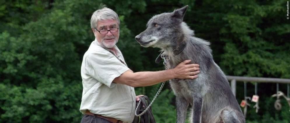 """Spannende Tier-Doku """"Die Rückkehr der Wölfe"""" im TV"""