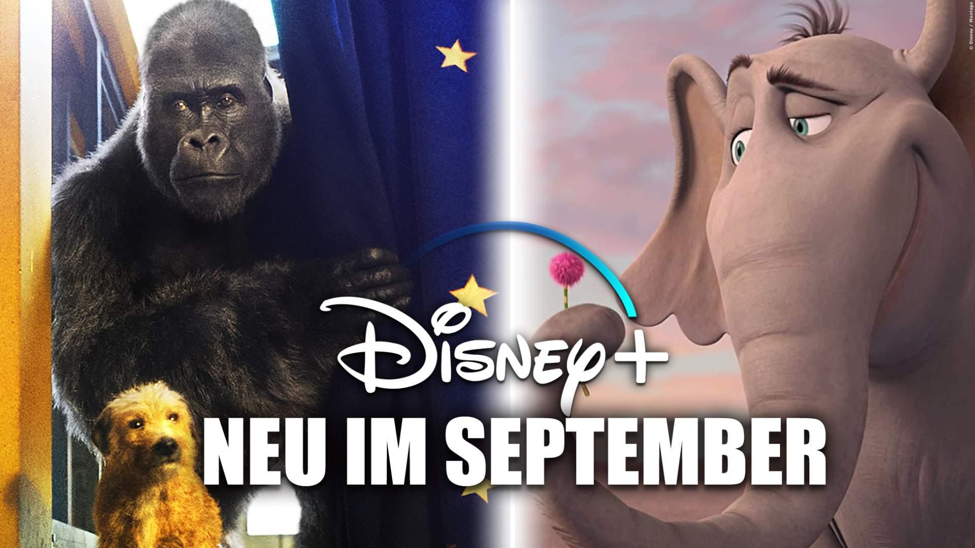 Disney+: Die Neuheiten im September 2020