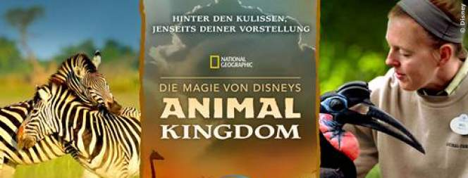 Die Magie von Disneys Animal Kingdom: Doku-Serie