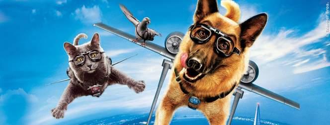 Gute Filme: Die besten Kinderfilme