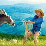 Mein Liebhaber, der Esel und ich Trailer und Filminfos