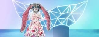 The Masked Singer: Alle Fakten zur Mega-Show
