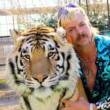 """""""Tiger King"""" wird fortgesetzt und erscheint noch 2021 - News 2021"""