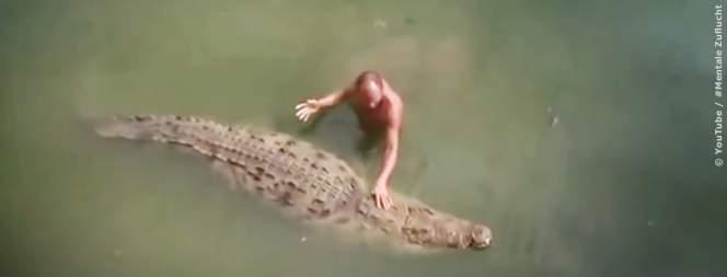 Seltsame Freundschaften zwischen Tier und Mensch