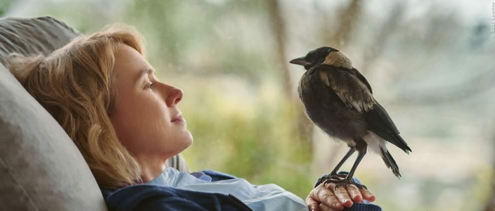 Beflügelt - Ein Vogel namens Penguin Bloom
