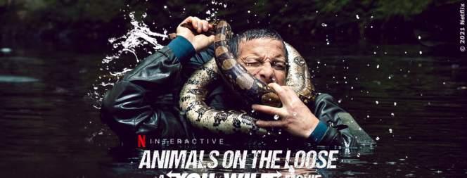 Du Gegen Die Wildnis: Interaktiver Netflix-Film