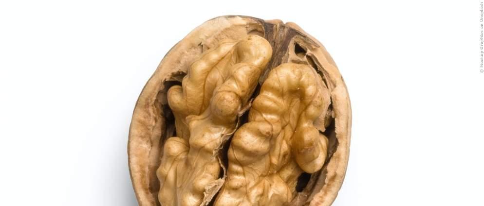Gesundheit: Diese Nüsse machen schlau und lassen nebenbei noch deinen Bauch kleiner werden