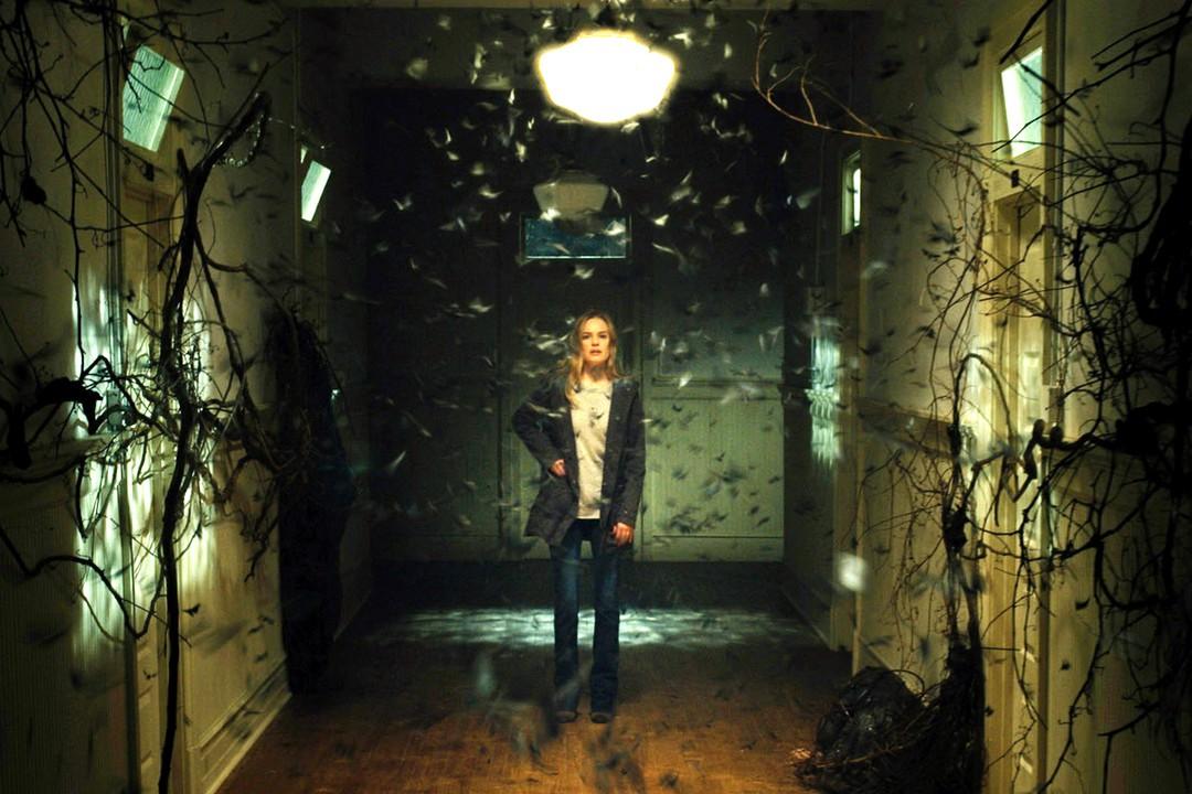 Before I Wake: Deutscher Trailer zum Horrorfilm - Bild 5 von 11