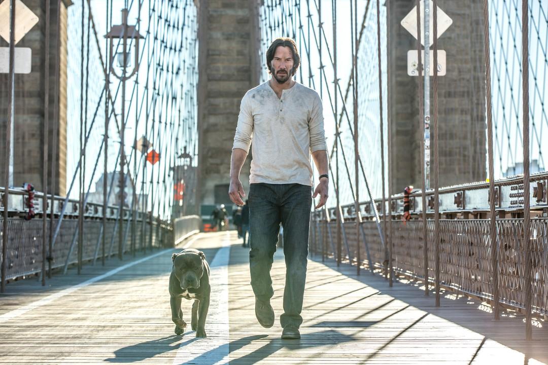 John Wick 2: Neuer deutscher Trailer mit Keanu Reeves - Bild 1 von 2