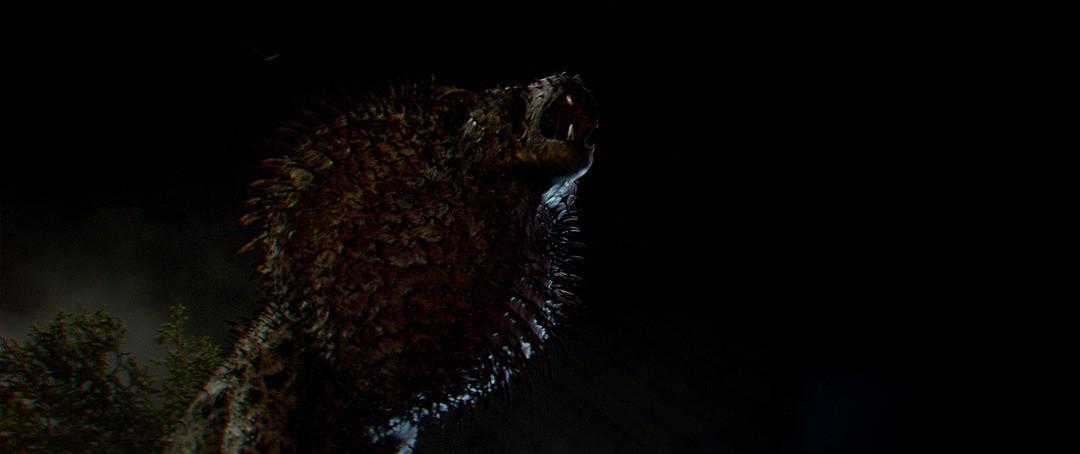 Phantastische Tierwesen: Die schönsten Bilder - Bild 65 von 74