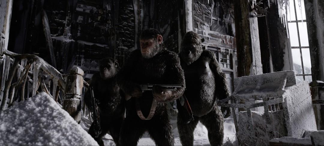 Planet Der Affen 3 - Survival: Neuer deutscher Trailer - Bild 1 von 5