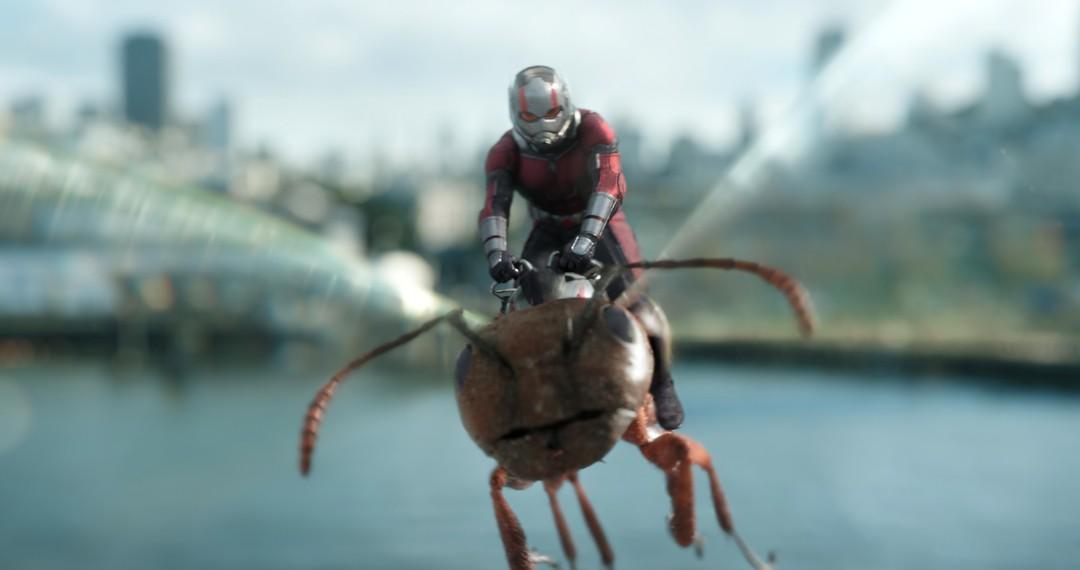 Ant-Man And The Wasp - Bild 22 von 24