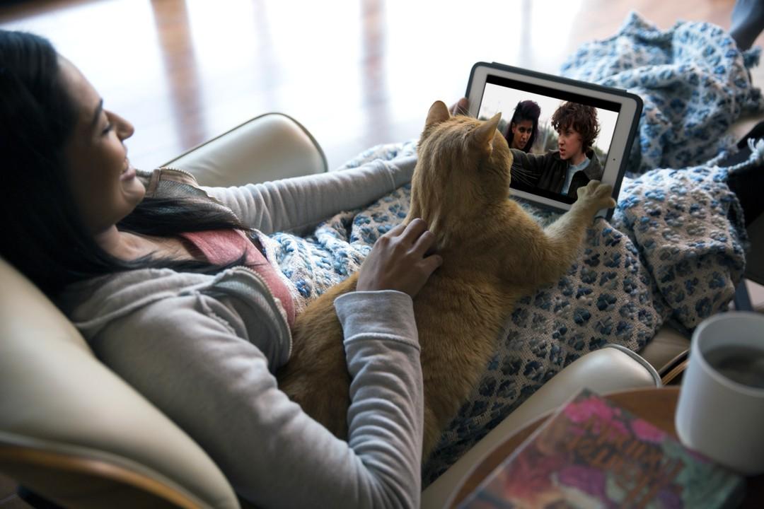 Haustiere sind gute Netflix-Partner - Bild 6 von 7