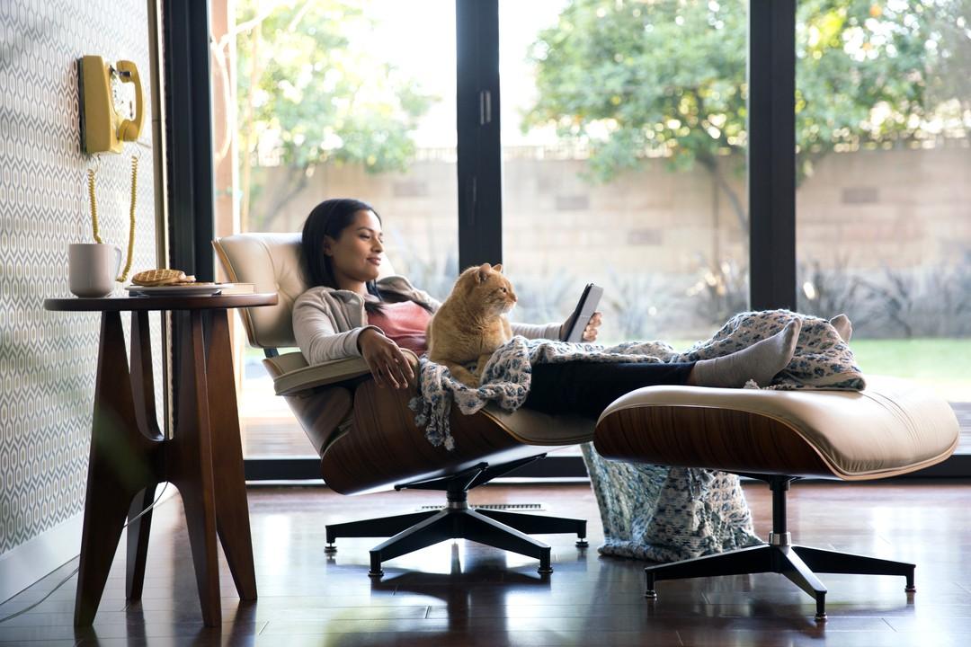 Haustiere sind gute Netflix-Partner - Bild 7 von 7