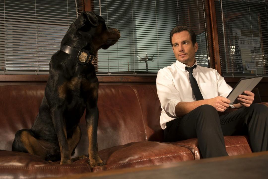 Show Dogs Trailer - Bild 1 von 16