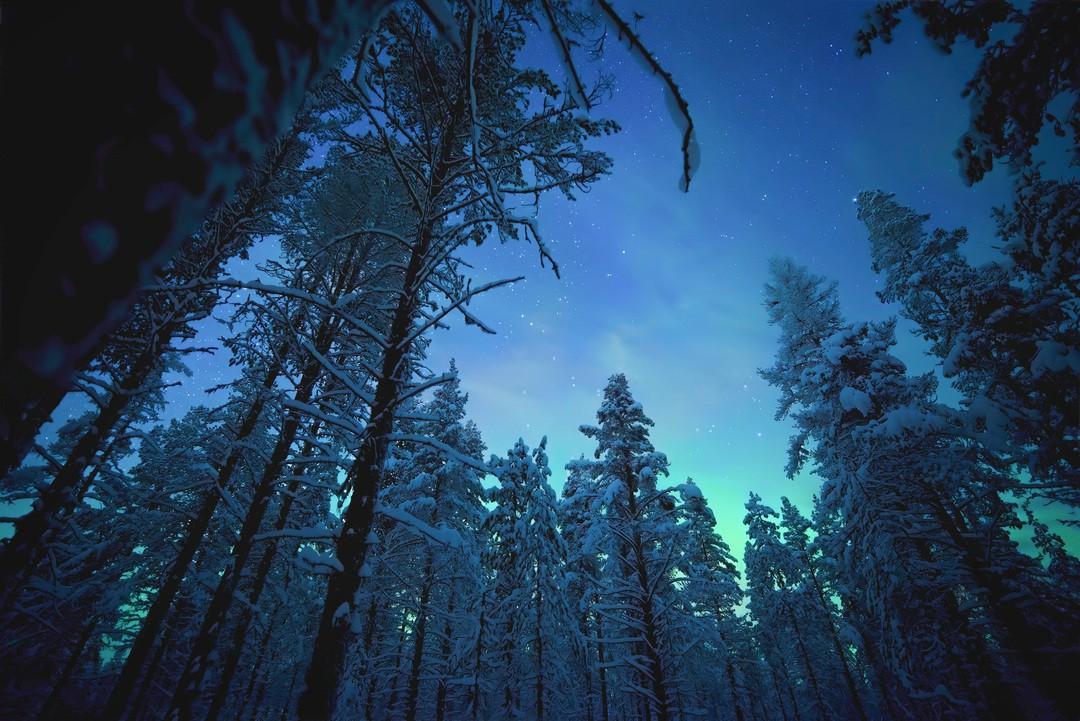 Earth At Night In Color - Bild 7 von 10