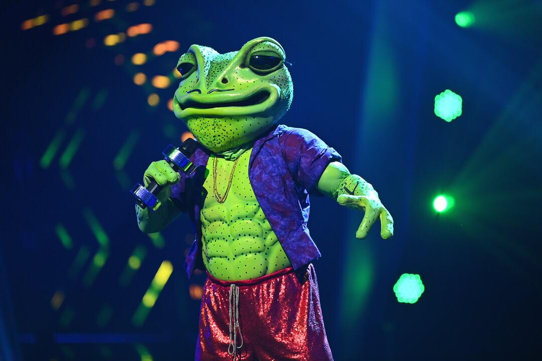 Masked Singer: Erste Zuschauer boykottieren Show - Bild 13 von 21