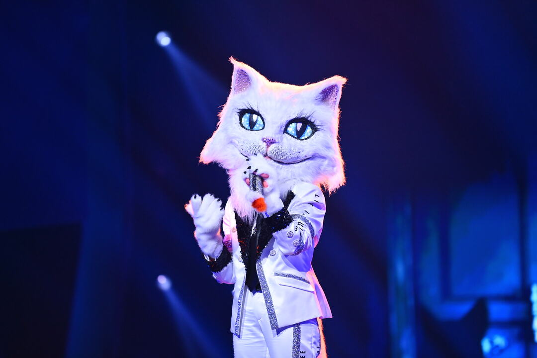 Masked Singer: Erste Zuschauer boykottieren Show - Bild 16 von 21