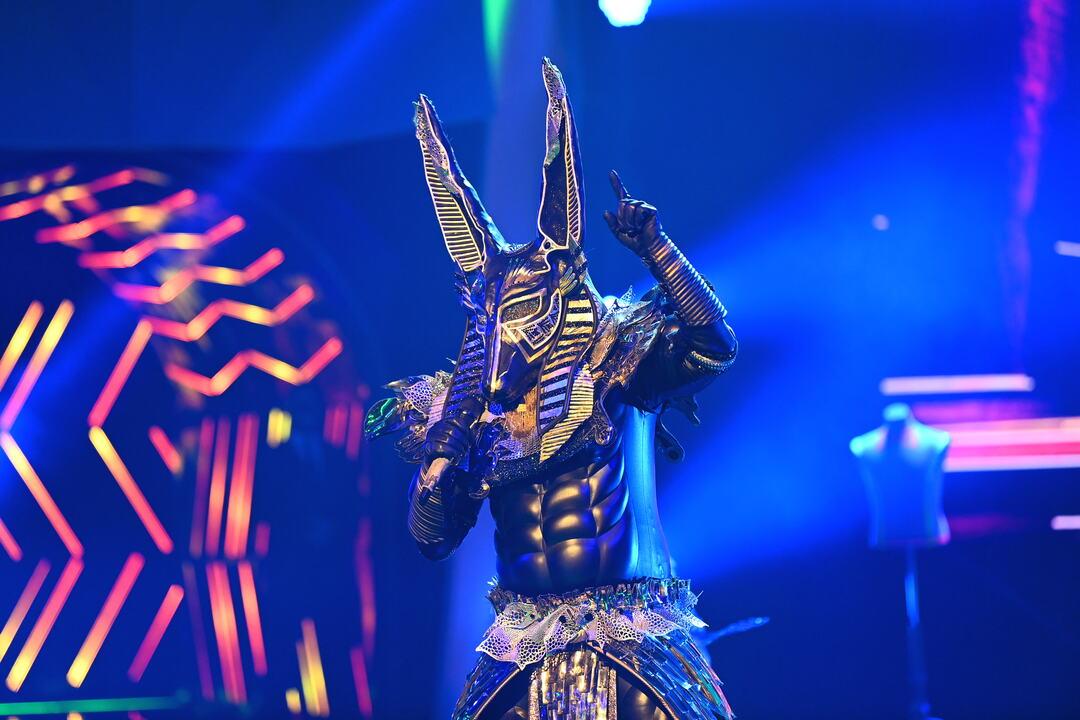 Masked Singer: Erste Zuschauer boykottieren Show - Bild 5 von 21