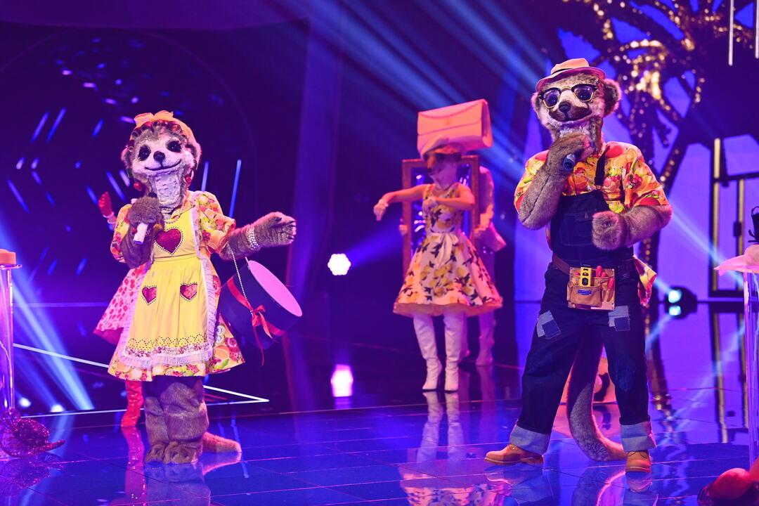 Masked Singer: Erste Zuschauer boykottieren Show - Bild 7 von 21