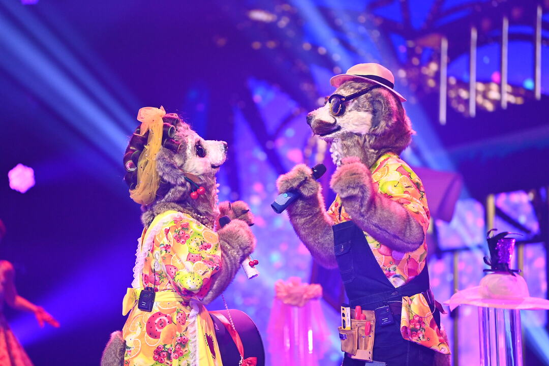 Masked Singer: Erste Zuschauer boykottieren Show - Bild 8 von 21