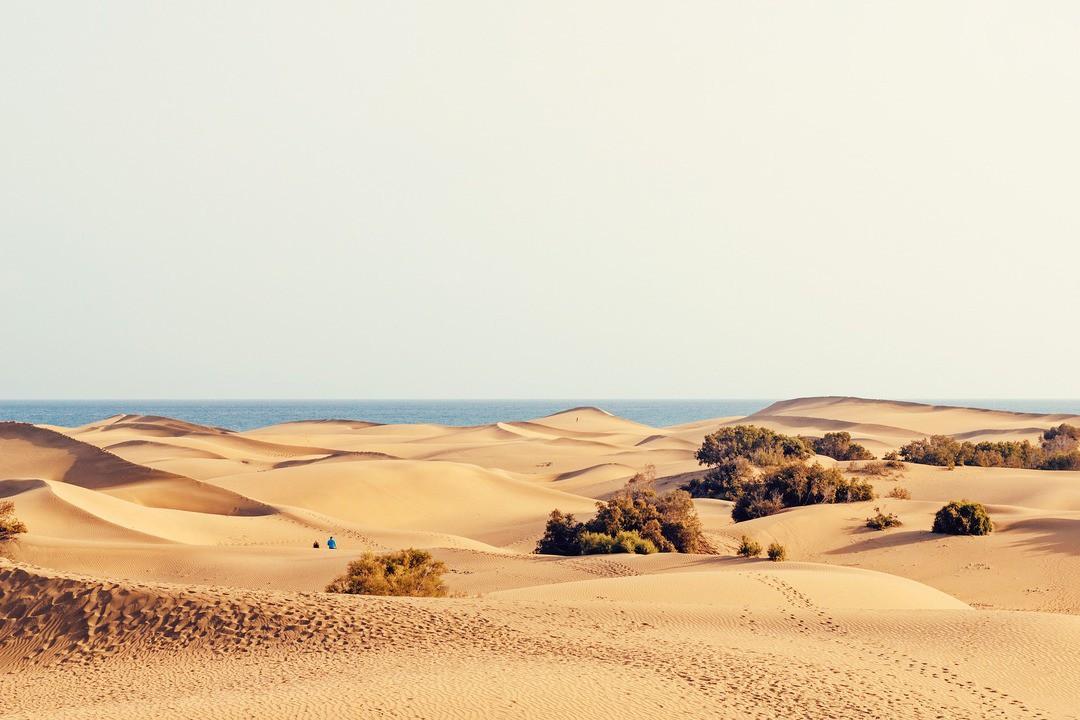 Sanddünen von Maspalomas