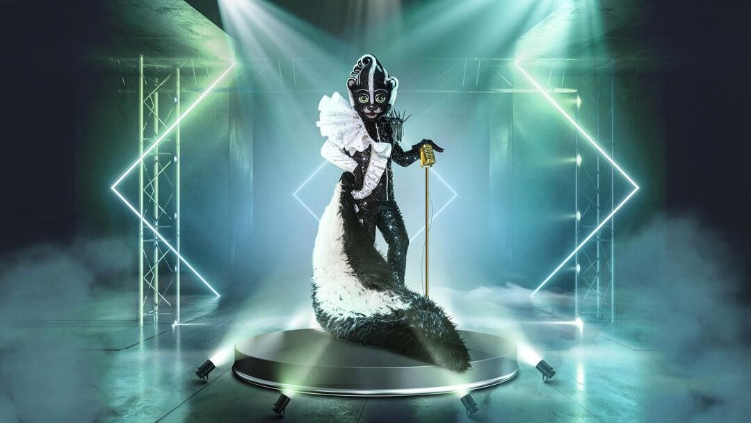 """Vier Premieren bei """"The Masked Singer"""" am Samstag und erste Spekulationen des Rateteams"""